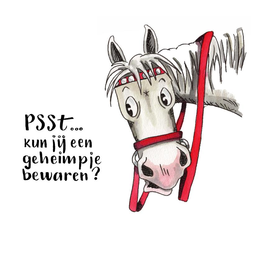 Sinterklaaskaarten - Sinterklaaskaarten Ozosnel verteld een geheimpje