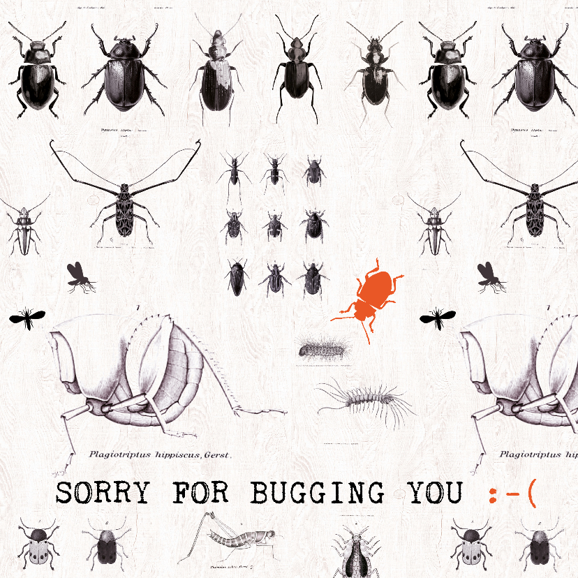 Sorry kaarten - SORRY FOR BUGGING YOU - Keverkaart