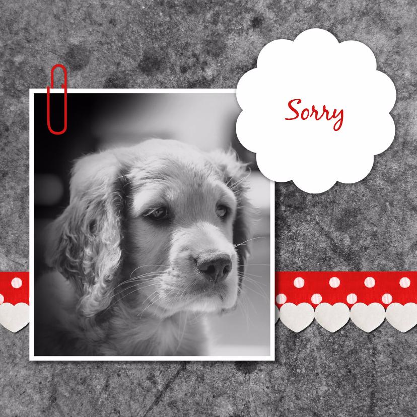 Sorry kaarten - Sorry hond met linten - DH