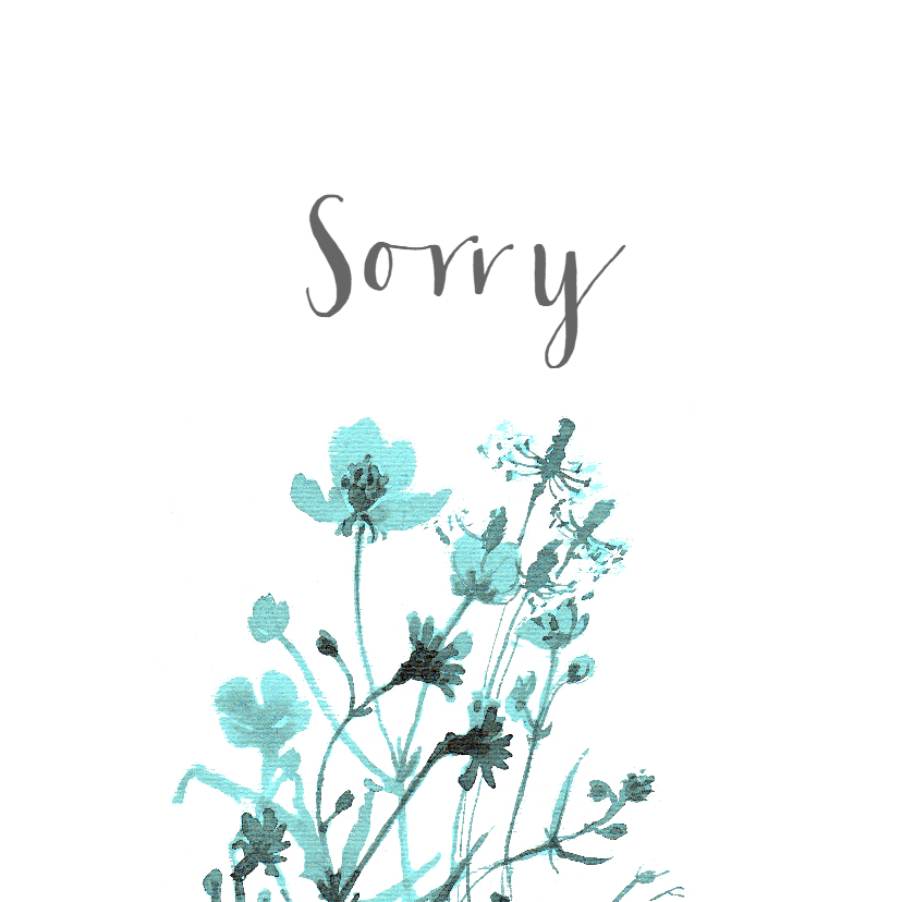 Sorry kaarten - Sorry kaart met getekende veldbloemen