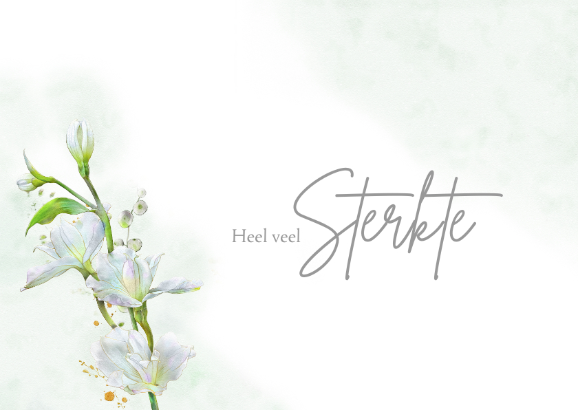 Sterkte kaarten - Mooie sterktekaart met afbeelding van witte bloemen