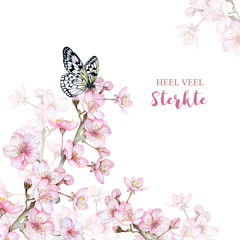 Sterkte kaarten - Sterkte bloesemtakken vlinder
