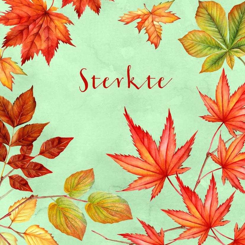 Sterkte kaarten - Sterkte herfstbladeren