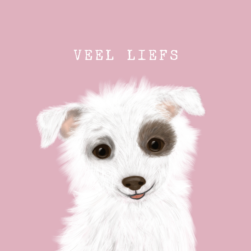 Sterkte kaarten - Sterkte hondje veel liefs en een dikke knuffel