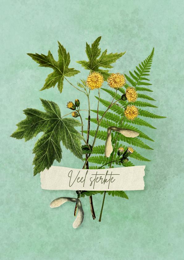 Sterkte kaarten - Sterkte kaart met bundeltje takjes bloem en zaden