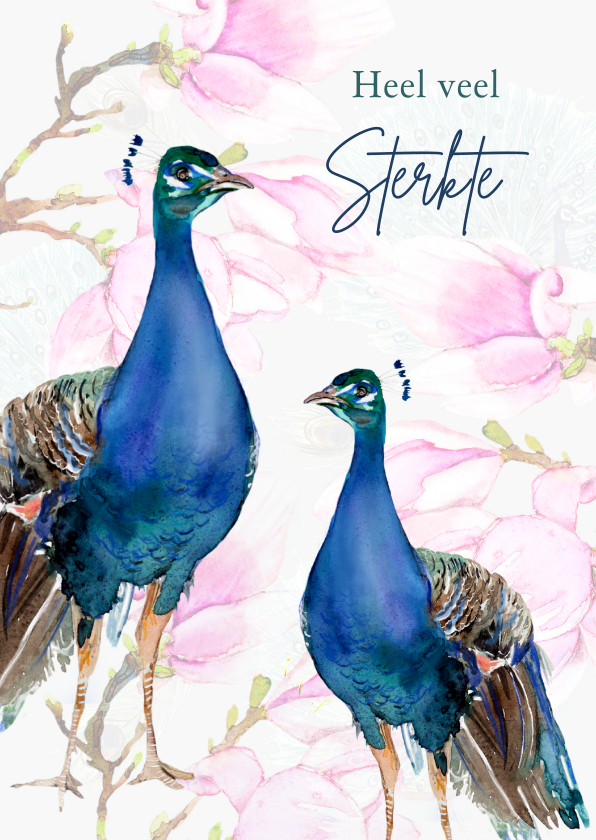 Sterkte kaarten - Sterktekaart Pauwen tussen de magnolia's
