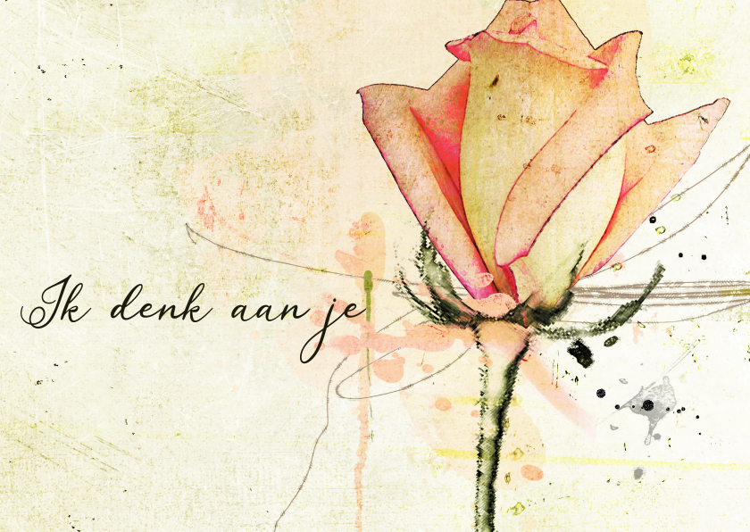 Sterkte kaarten - Sterktekaart roos zacht zalmkleur