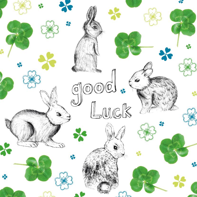 Succes kaarten - Good luck kaart met klavertjes en konijnen in groen en blauw