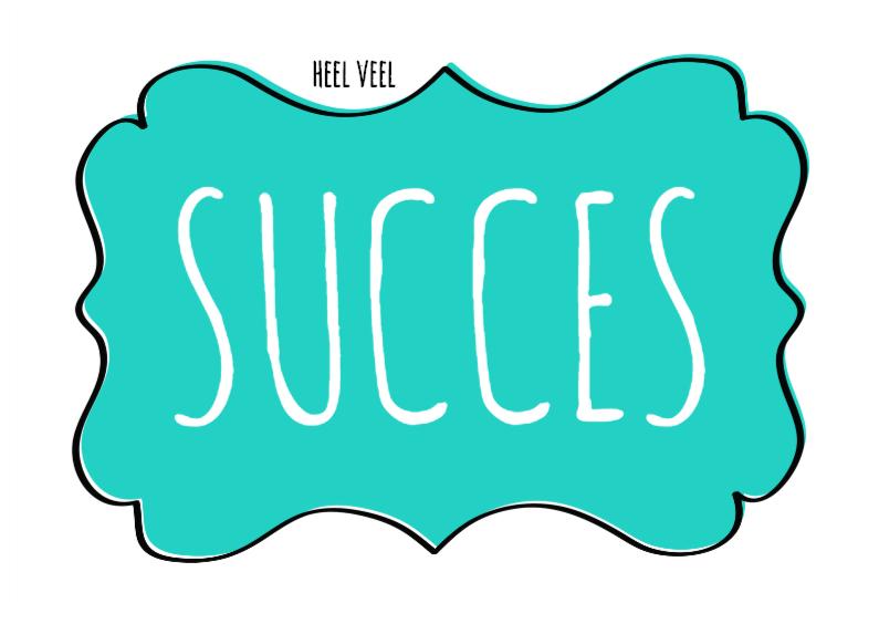 Succes kaarten - Heel veel succes -label - SG