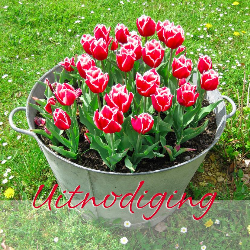 Uitnodigingen - Uitnodigingskaart met rode tulpen