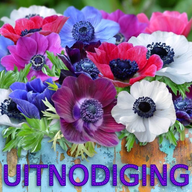 Uitnodigingen - Warme uitnodiging voor feest met kleurige anemonen