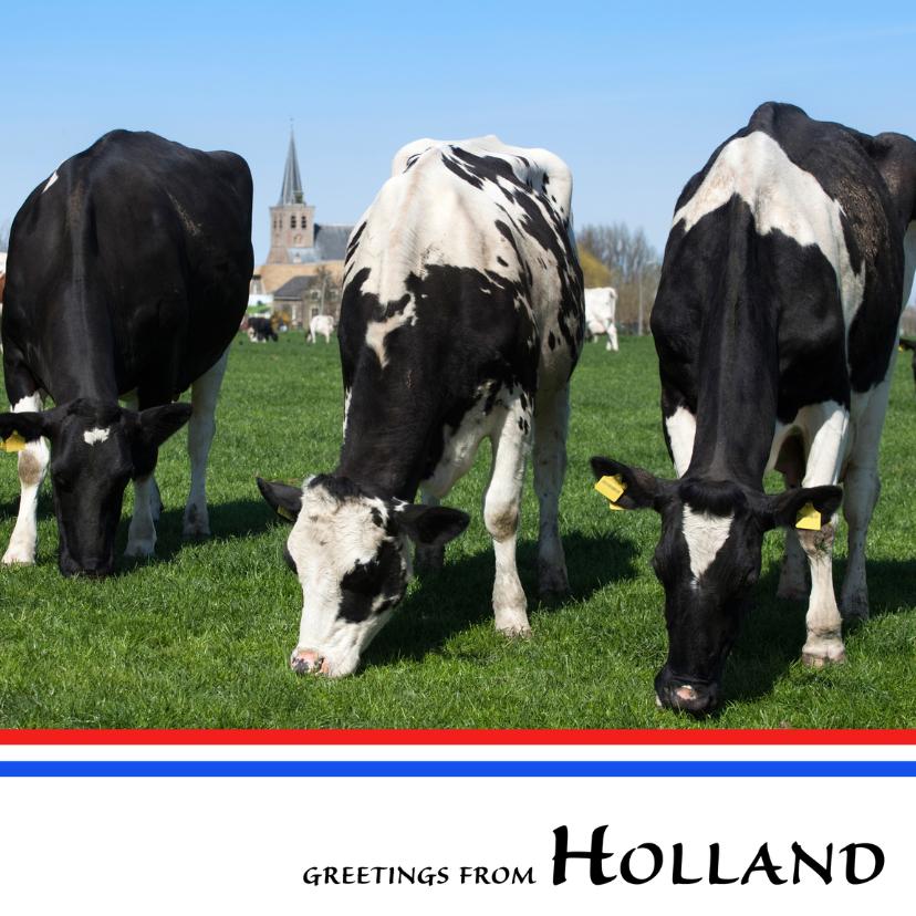Vakantiekaarten - Greetings from Holland VIII