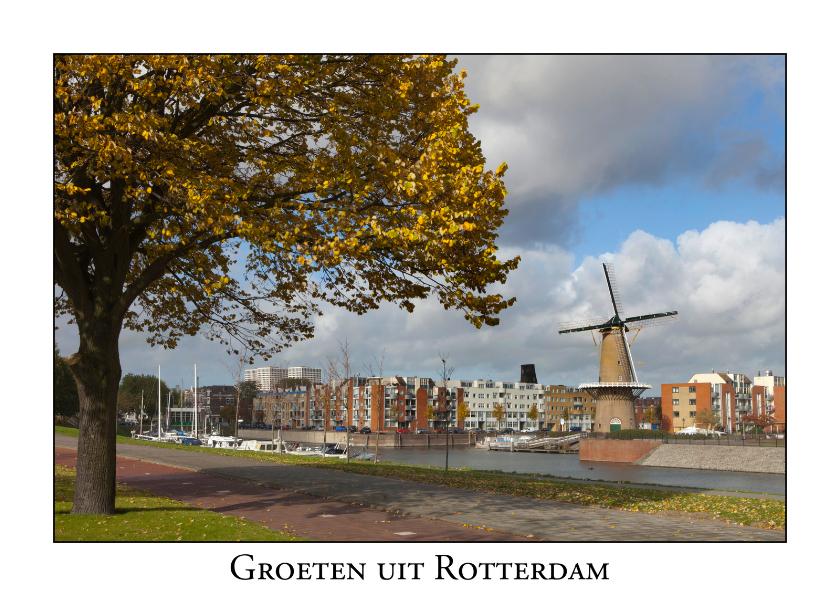 Vakantiekaarten - Groeten uit Rotterdam XV