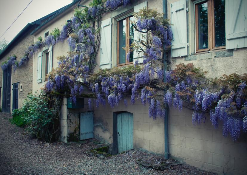 Vakantiekaarten - La France