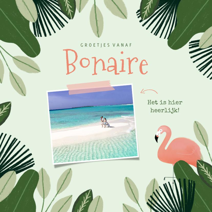 Vakantiekaarten - Tropische vakantiekaart Bonaire met jungle kader en flamingo