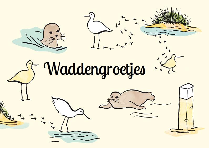Vakantiekaarten - Waddengroet zeehonden en vogels
