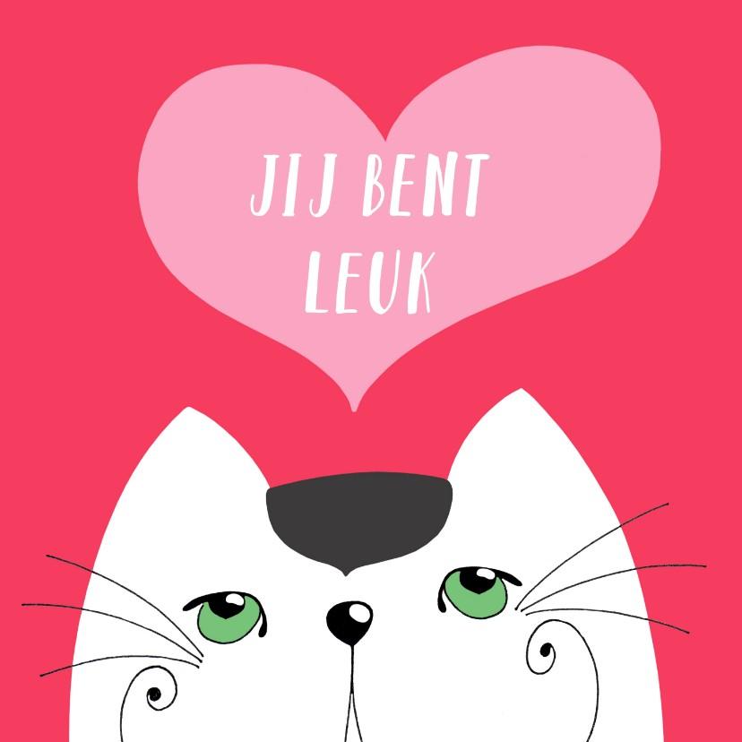 Valentijnskaarten - Valentijnskaart - Kat - jij bent leuk - SK