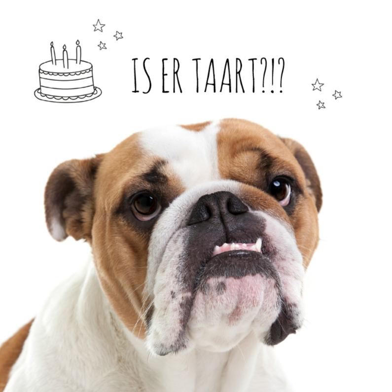 Verjaardagskaarten - Dieren verjaardagskaart - Bulldog hond