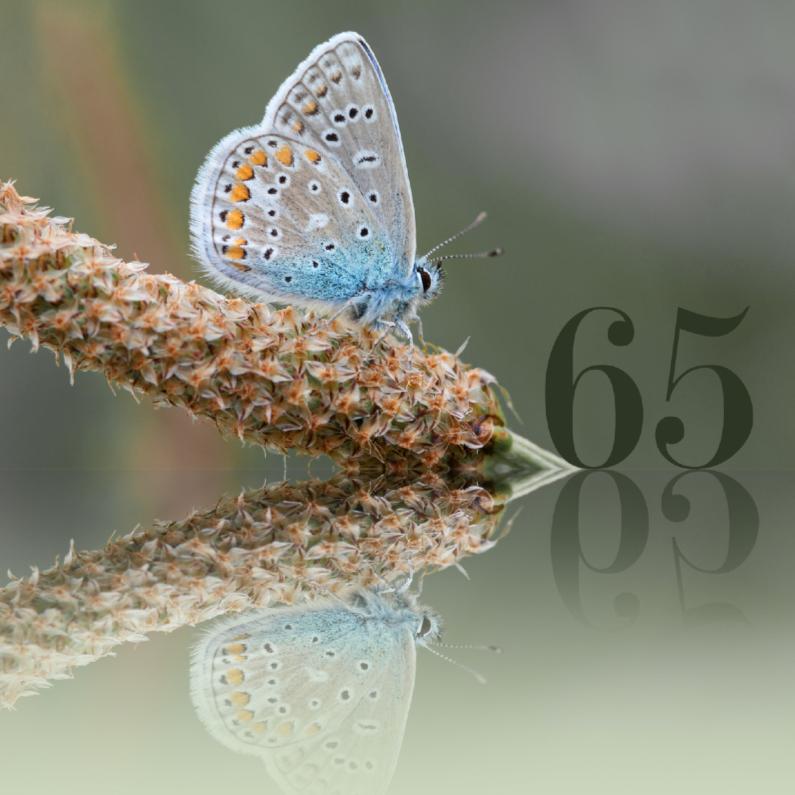 Verjaardagskaarten - Felicitatie 65 jaar