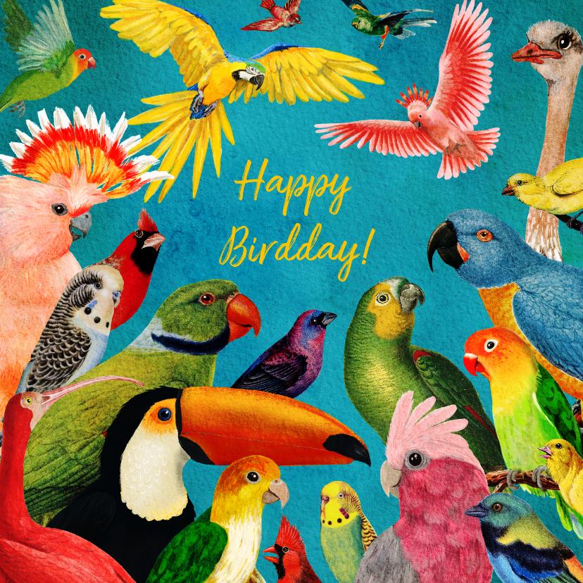 Verjaardagskaarten - Happy Birdday! kleurrijke vogel felicitatiekaart