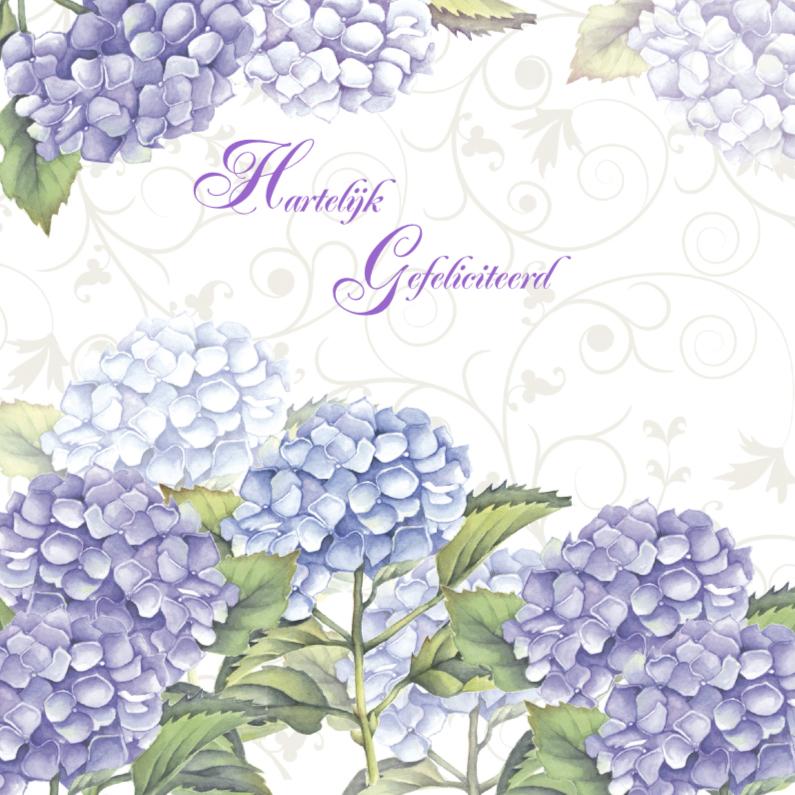 Verjaardagskaarten - Hartelijk Gefeliciteerd hortensia