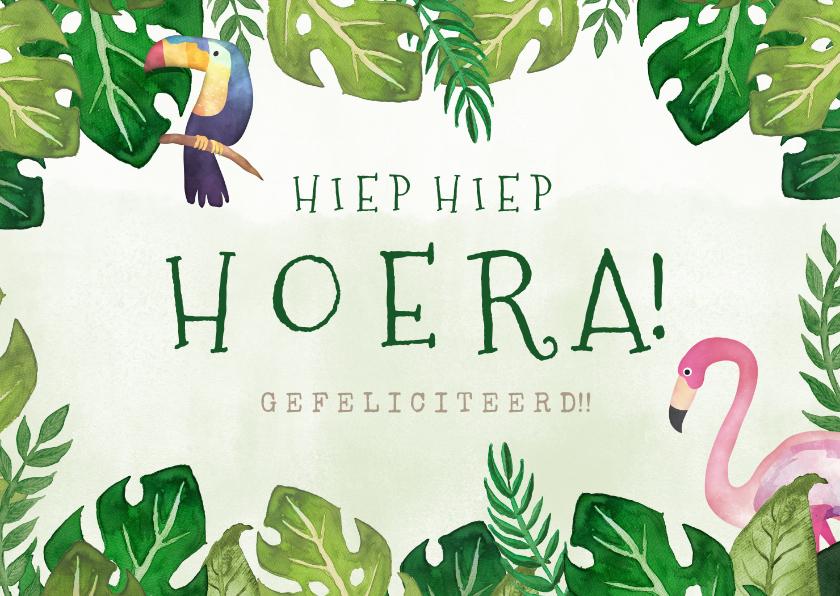 Verjaardagskaarten - Hippe  tropische jungle verjaardagskaart flamingo en toekan