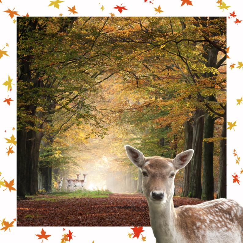 Verjaardagskaarten - Jarig met herfstbladeren
