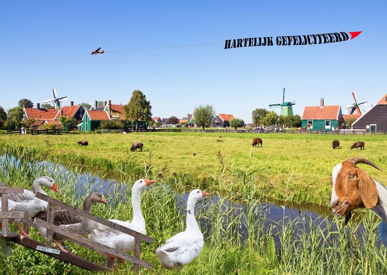 Verjaardagskaarten - Jarig met humor - Hollands landschap -