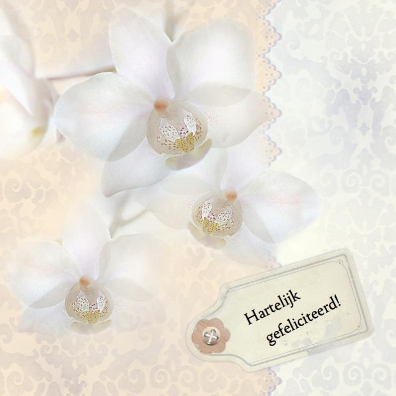 Verjaardagskaarten - Jarig met witte orchidee