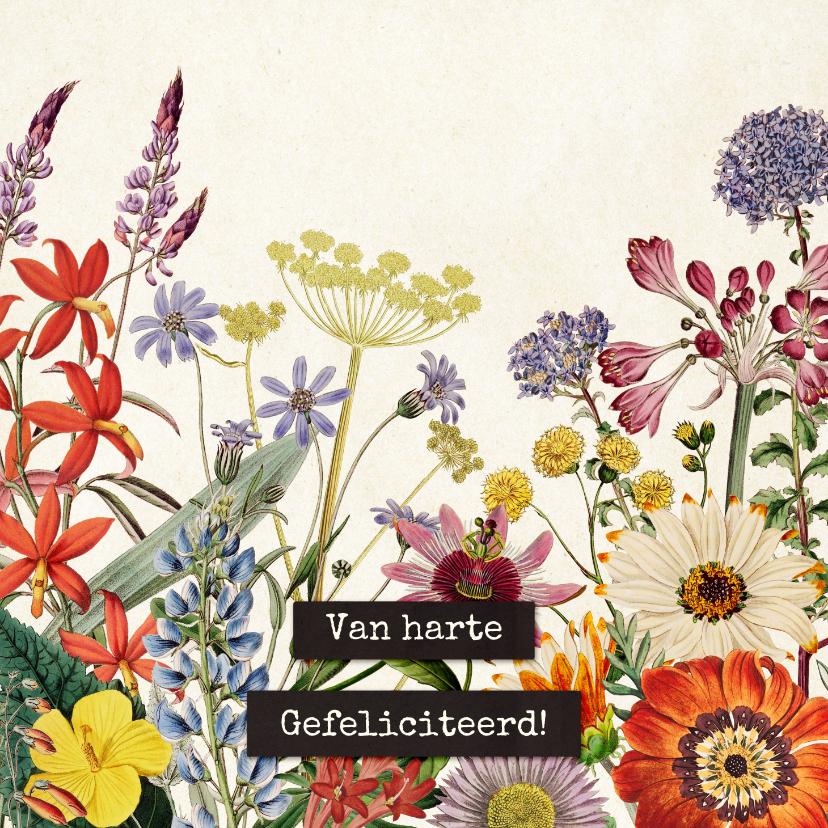 Verjaardagskaarten - Van harte gefeliciteerd felicitatiekaart vintage bloemenveld