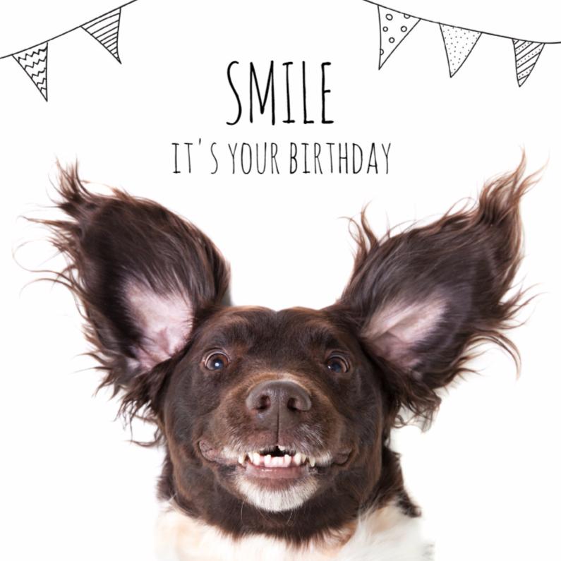 Verjaardag A Doggy Birthday Smile Kaartje2go