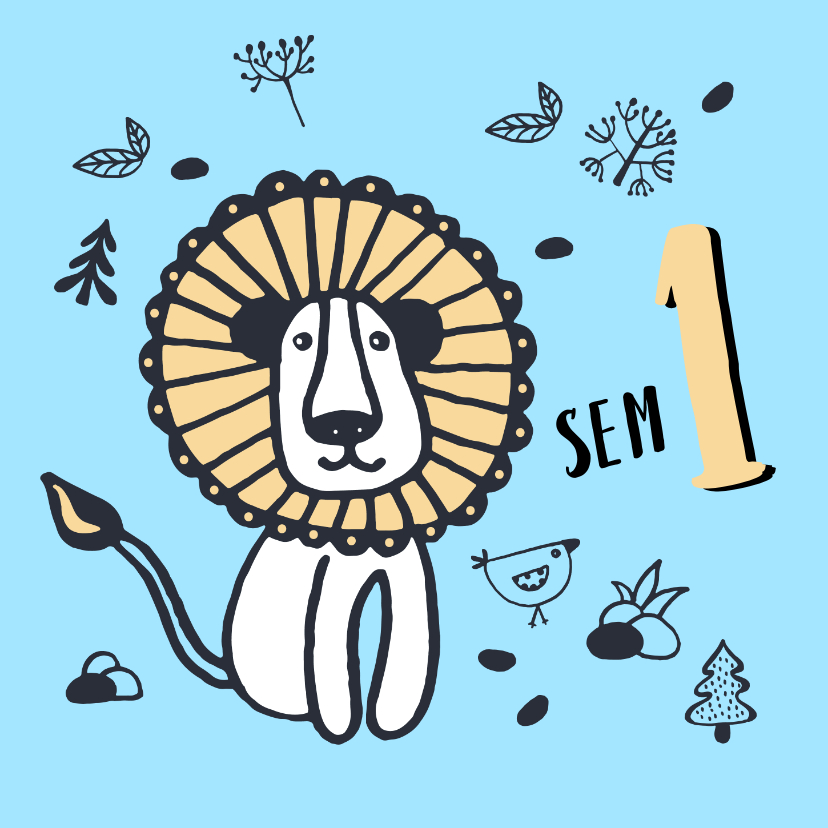 Verjaardagskaarten - Verjaardag stoere leeuw