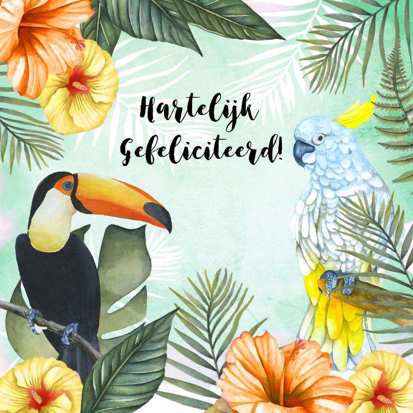 Verjaardagskaarten - Verjaardag tropisch vogels