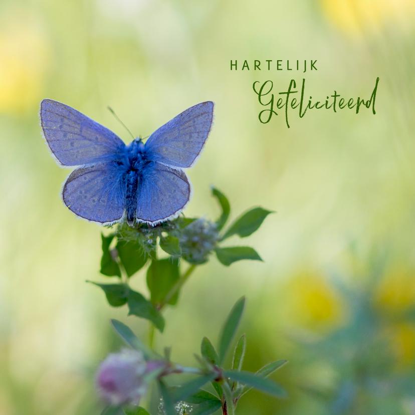 Verjaardagskaarten - Verjaardagskaart blauwe vlinder