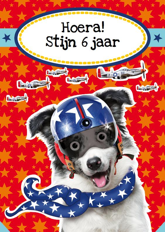 Verjaardagskaarten - verjaardagskaart hond piloot