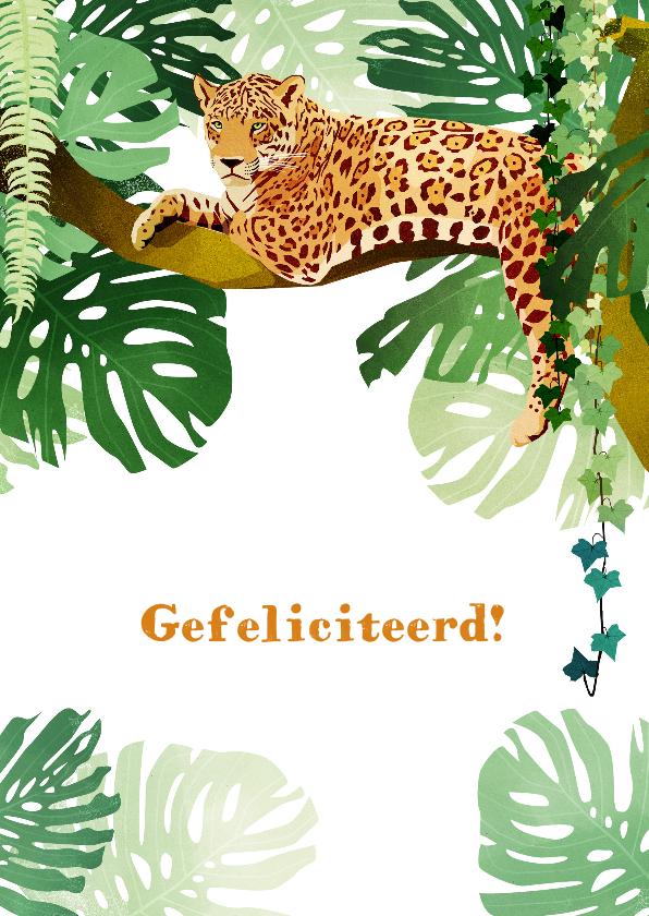 Verjaardagskaarten - Verjaardagskaart Jungle