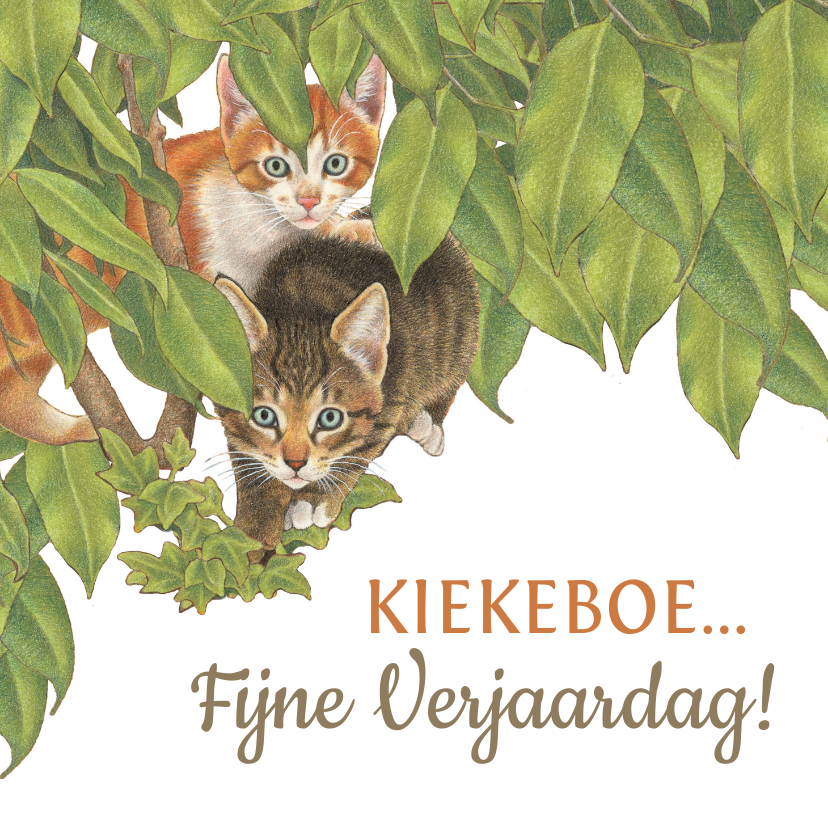 Verjaardagskaarten - Verjaardagskaart Kittens zeggen Kiekekboe!