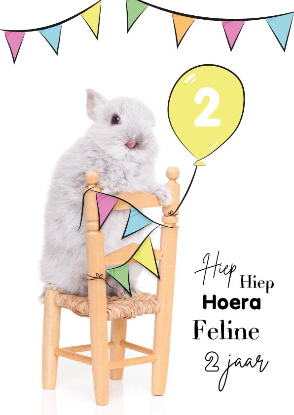 Verjaardagskaarten - Verjaardagskaart - Konijntje op stoel met vlaggetjes