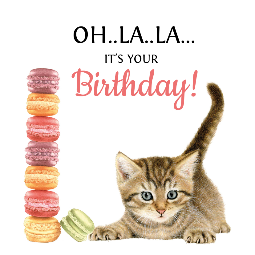 Verjaardagskaarten - Verjaardagskaart Macarons Kitten