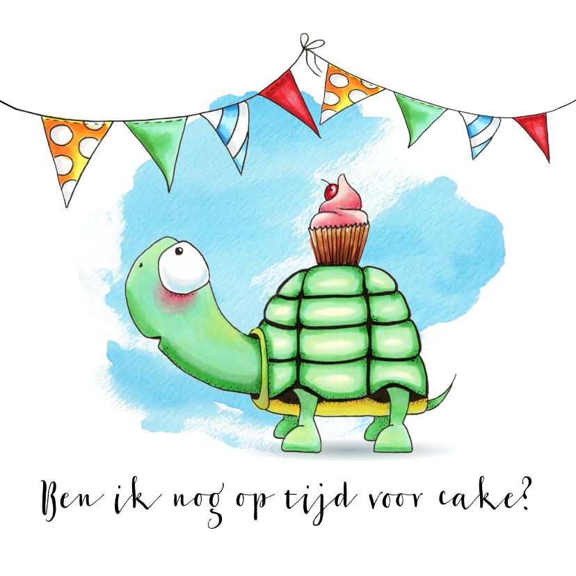 Verjaardagskaarten - Verjaardagskaart met Schildpad