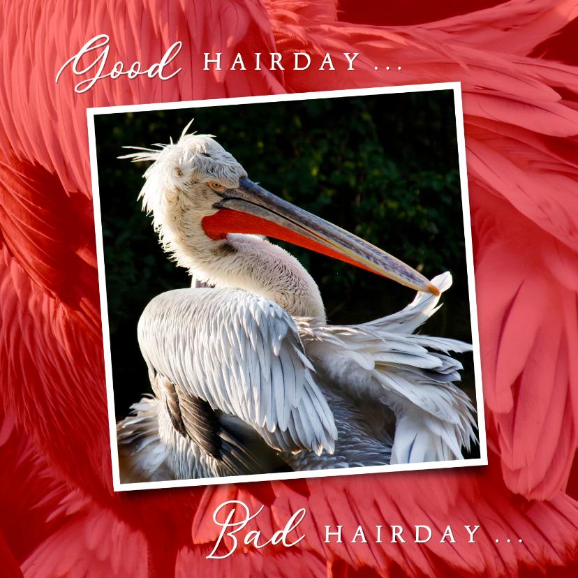 Verjaardagskaarten - Verjaardagskaart Pelikaan Good Bad Grey Hairday