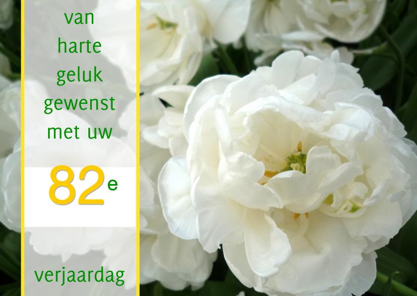 Verjaardagskaarten - Witte felicitatie Roos-tulpen