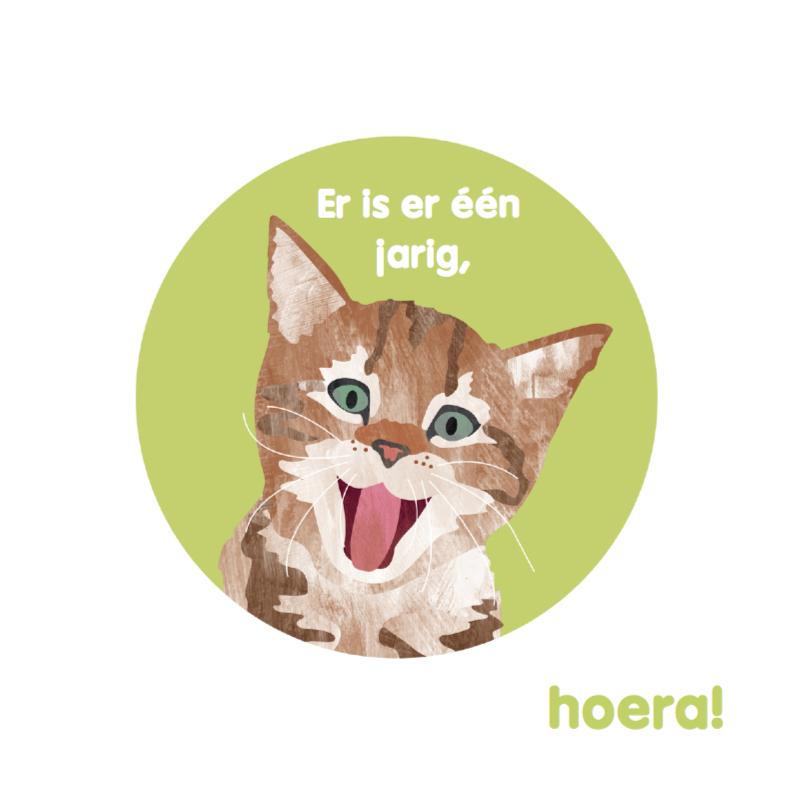 Verjaardagskaarten - Zingende kat voor je verjaardag
