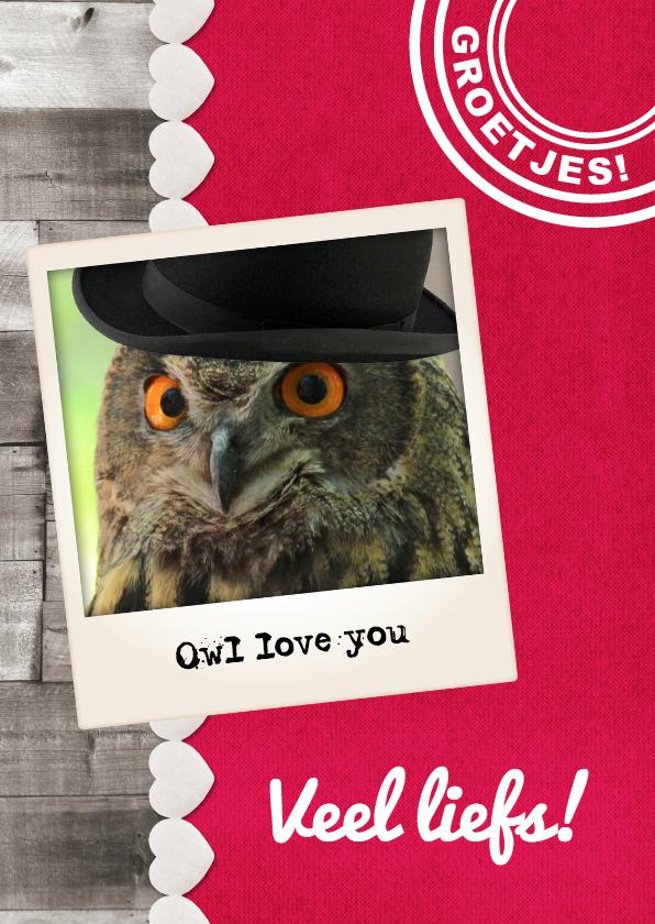 Vriendschap kaarten - Grappige uil met hoed - DH