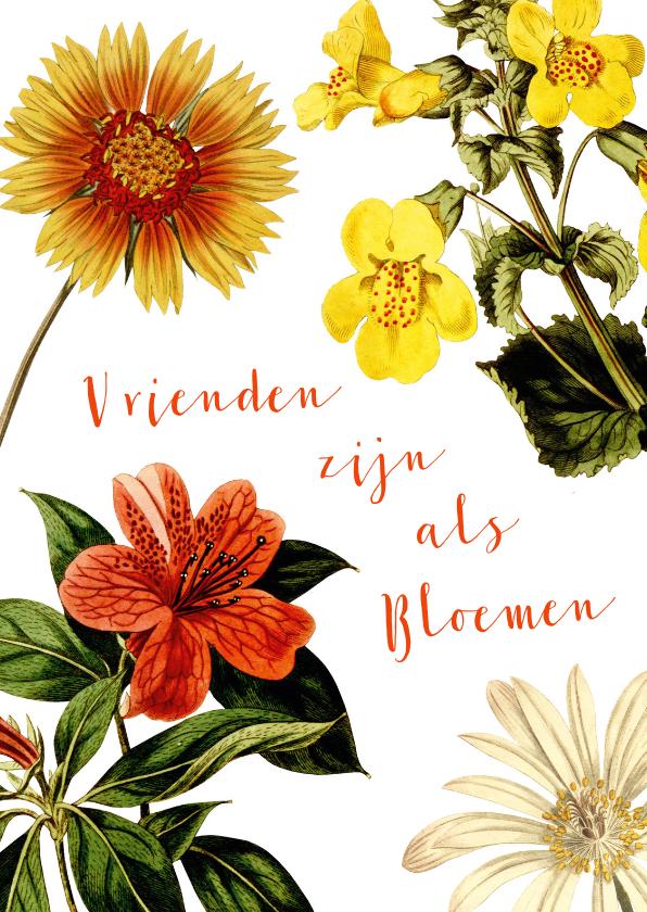 Vriendschap kaarten - Vrienden zijn als bloemen