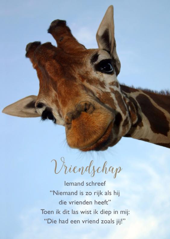 Vriendschap kaarten - Vriendschap kaart giraf met gedicht