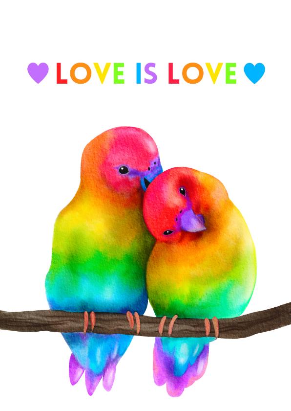 Vriendschap kaarten - Vriendschap kaart Love is Love rainbow lovebirds