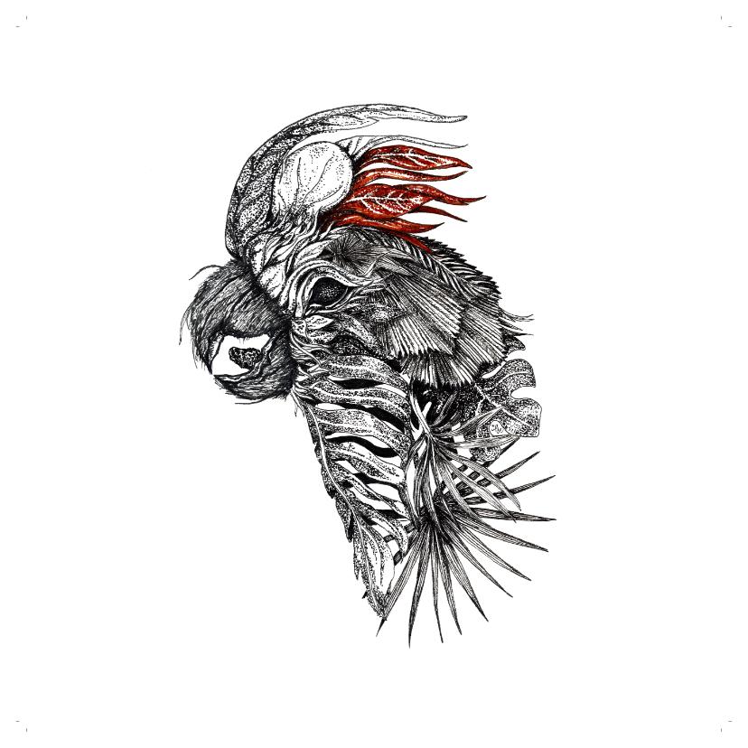 Woonkaarten - Bijzonder kaartje met Kaketoe illustratie zwart-wit