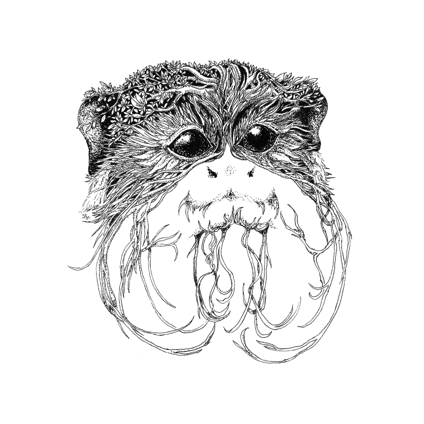 Woonkaarten - Keizer-tamarin aapje illustratie zwart-wit
