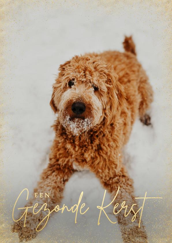 Zakelijke kerstkaarten - Zakelijke kerstkaart stijlvol grote foto hond gezonde kerst